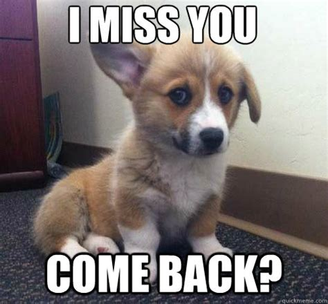 Miss You Meme - miss you meme funny www imgkid com the image kid has it