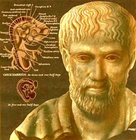 biography of aristotle and galileo aristotle s biology and medicine discoveries and opinions
