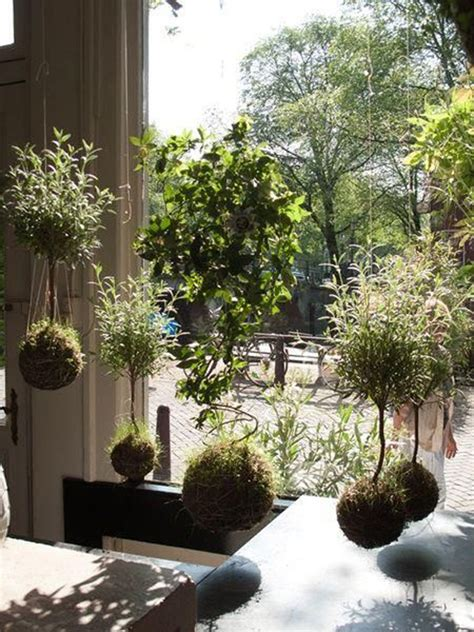 beautiful kokedama string garden ideas homemydesign