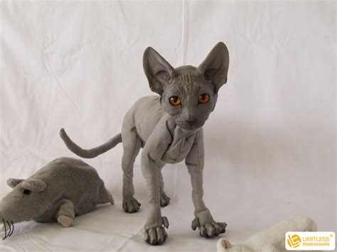 Cat Doll by Commissioned Sphynx Cat Doll By Limitlessendeavours On