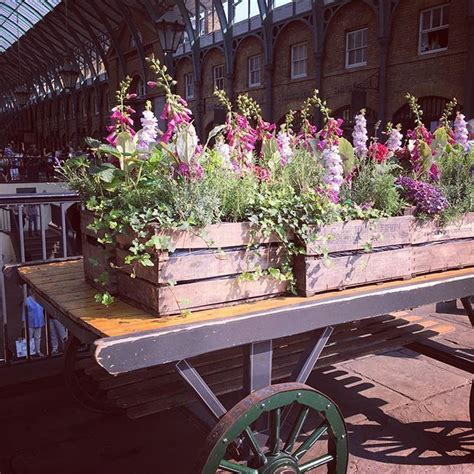 flowers covent garden 102 best covent garden in bloom images on