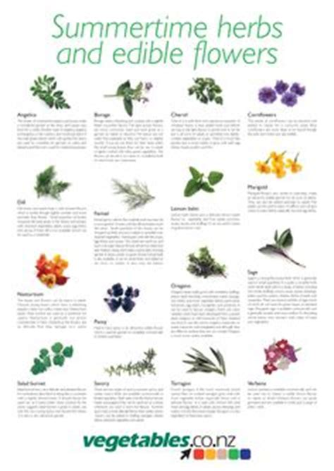 1000 images about herb vegetable and otherwise edible 1000 images about master cooks corps on pinterest