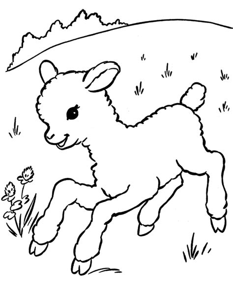 sheep coloring page animal sheeps coloring pages