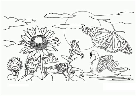 Coloring Page Nature free printable nature coloring pages for best