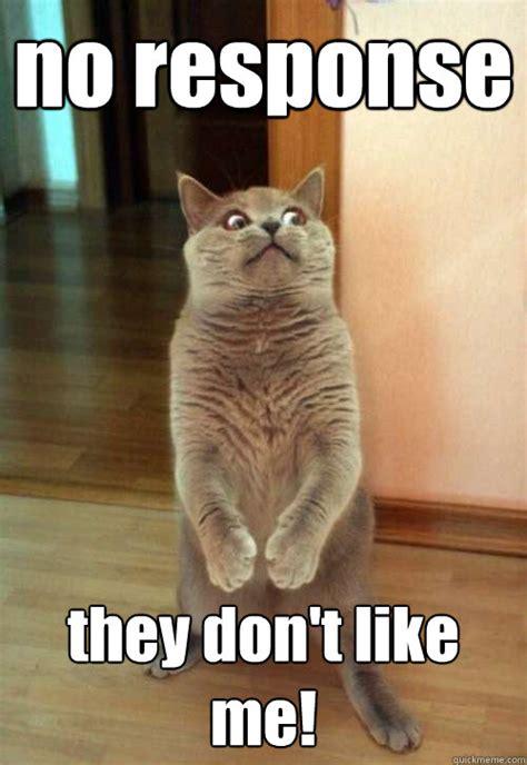 No Response Meme - no response they don t like me cat meme cat planet