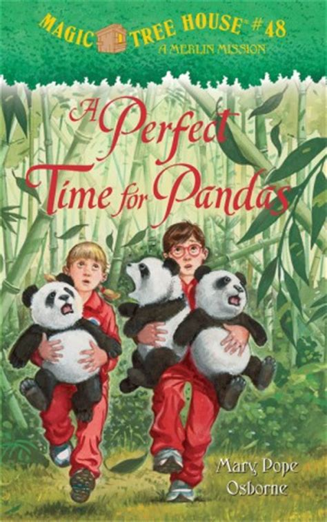 the magically brilliant boy books a time for pandas wkn webkinz newz