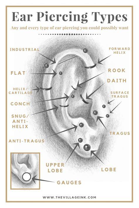 ear piercings types diagram ear piercing diagram www imgkid the image kid has it