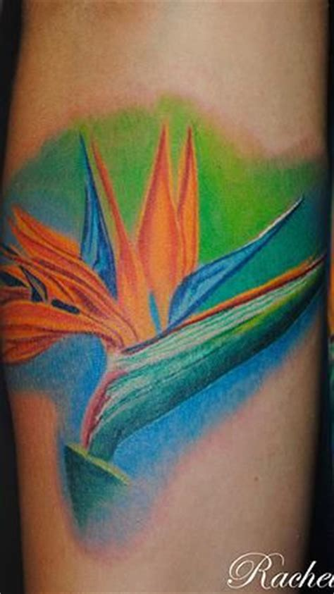 birds of paradise flower tattoo google search tattoos