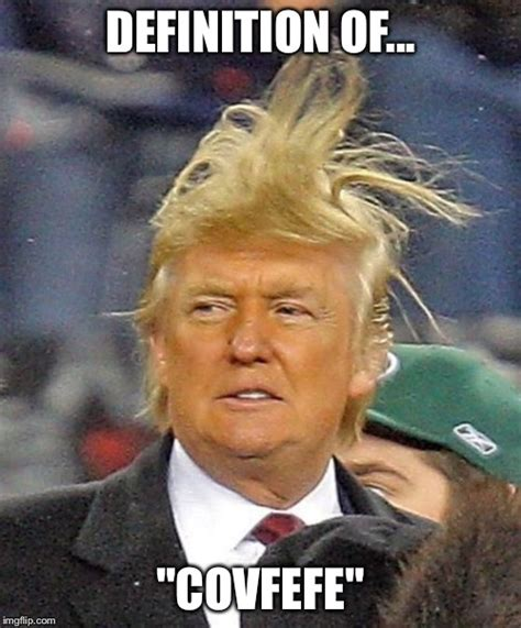 Definition Of A Meme - donald trumph hair imgflip