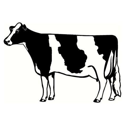 imagenes de vacas a blanco y negro compra vaca lechera online al por mayor de china