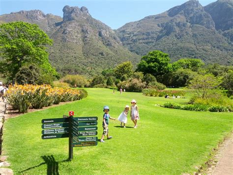 Kirstenbosch National Botanical Gardens Check Out Botanical Gardens Cape Town