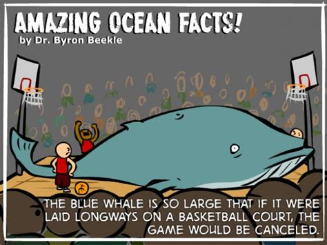 Kaos Amazing Graphic 20 Oceanseven amazing facts 7 pics pleated