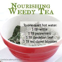 Nettle Tea For Detox by 1000 Images About Nettles On Nettle Soup
