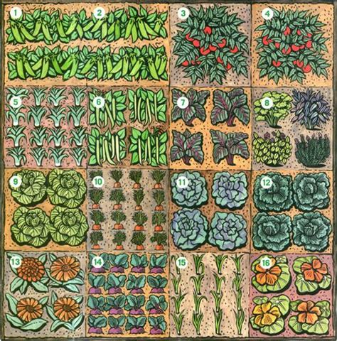 Square Foot Garden Layout Ideas Garden Layouts Picmia