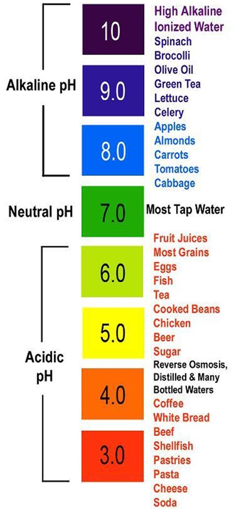 proper ph balance is critical for good health a pure new you what does ph balanced mean