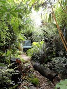 25 best ideas about jungle gardens on pinterest garden oasis tropical gardens and small city