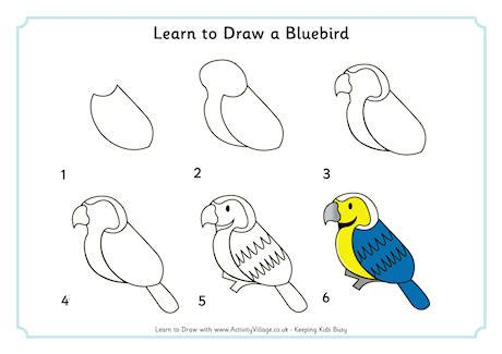 drawing birds learn to 1600583407 learn to draw a bluebird