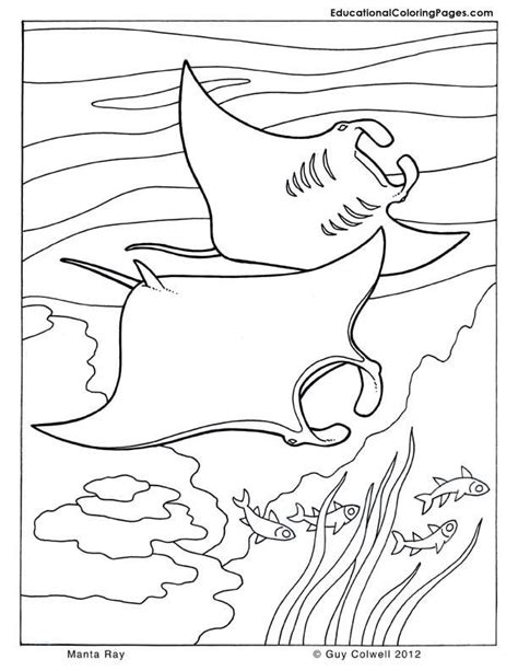 ocean coloring pages pdf ocean coloring book pages for the little ones