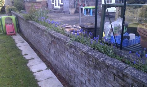 garden wall foundations rebuild garden wall build shed foundation repointing