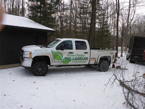 plymouth tree services tree services maple grove plymouth minnetonka