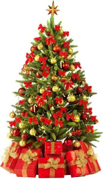 beautiful christmas tree 3 hd pictures free stock photos
