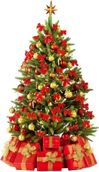 weihnachtsbaum bilder gratis beautiful tree 3 hd pictures free stock photos