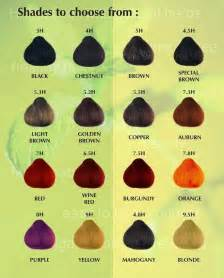henna hair color chart dye your hair naturally using henna hildablue