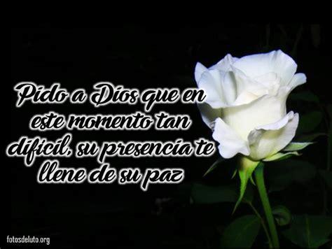 imagen de una hermosa rosa blanca para whatsapp lindas im 225 genes de luto con rosas blancas para expresar