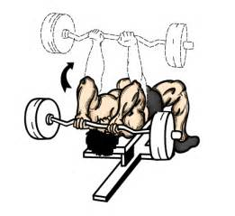 Incline Dumbbell Press Without Bench Exercise Tutorial Skullcrushers Lying Tricep Extensions