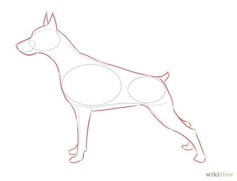 how to doberman how to draw dobermans