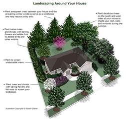 proper landscaping matanuska electric association inc