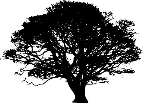 tree silhouettes clip art at clker com vector clip art