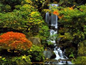 portland images japanese garden hd wallpaper and