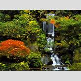 Portland images Japanese Garden HD wallpaper and background photos ...