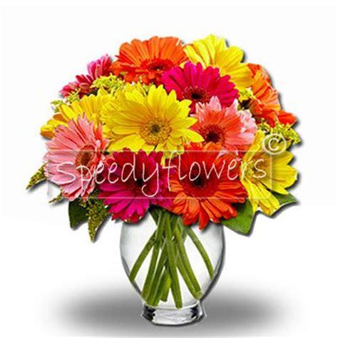 spedizione fiori roma fiori a domicilio roma spedizione fiori roma