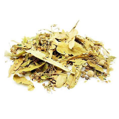 linden flower leaf and seed of bodhi tree esgreen enjoy slow green