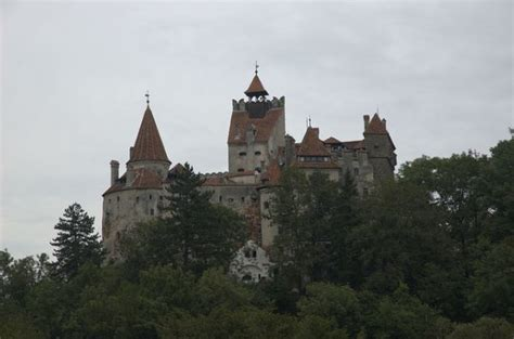 dracula s castle for sale for sale dracula s castle neatorama