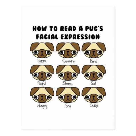 comic pug pin pug on