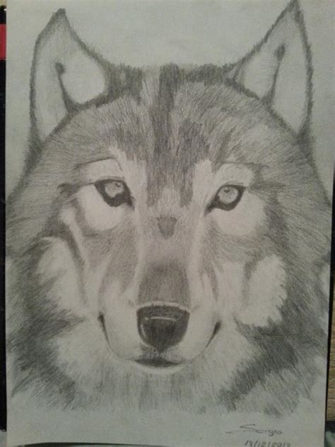 imagenes a lapiz de lobos imagenes de lobo para dibujar a lapiz imagui