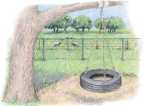 how to draw a tire swing tree swing drawing