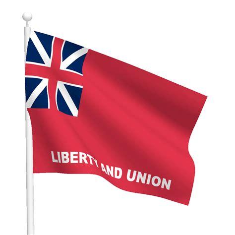 3ft x 5ft taunton flag flags international