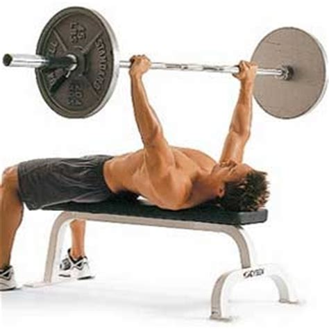 bench press for weight loss best workout plan to lose fat the best exercises for fat
