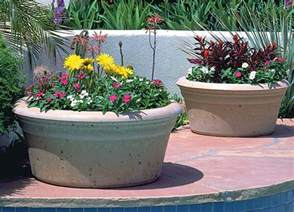 try large planters for outside for a cold season