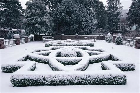 winter landscape ideas hgtv