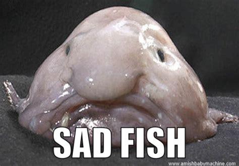 Funny Sad Meme - memes amish baby machine podcast page 2
