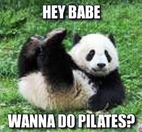 Hey Babe Meme - 80 cute panda memes