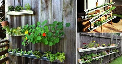 vertical diy rain gutter garden ideas  small spaces