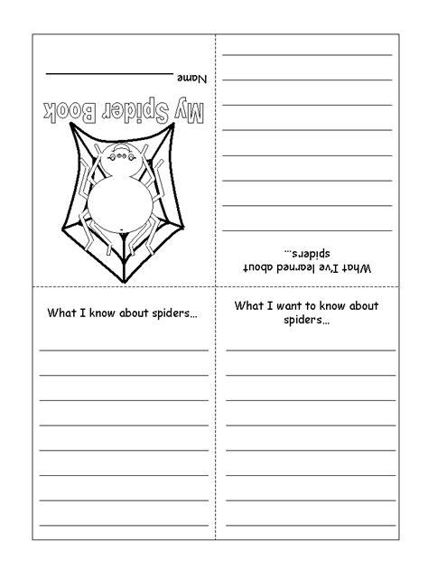 spider worksheets for kindergarten spider worksheet printable