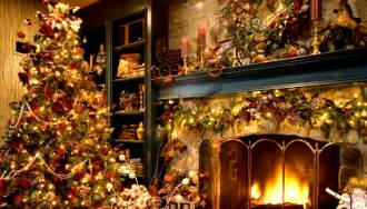 the pagan origins of christmas trees on behalf of all
