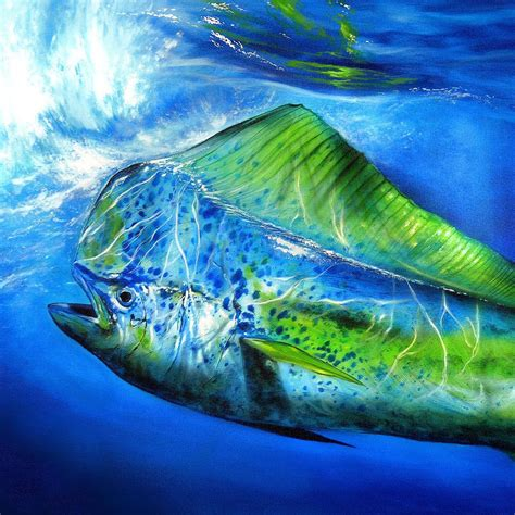 guy harvey mahi pictures to pin on pinterest tattooskid